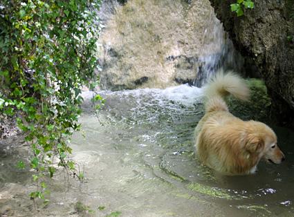cascate vicino roma