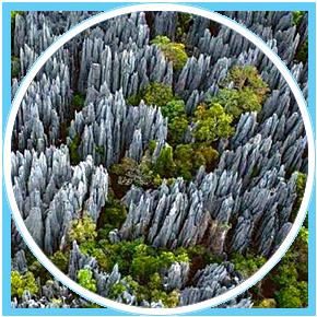 Madagascar-Riserva-Naturale-di-Tsingy-de-Bemaraha