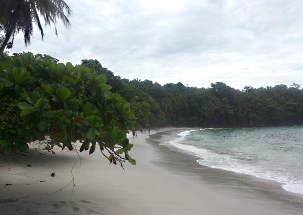 Spiaggia-parco-nazionale-manuel-antonio