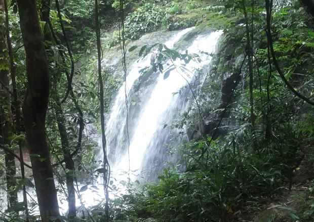 cascata-parco-nazionale-manuel-antonio