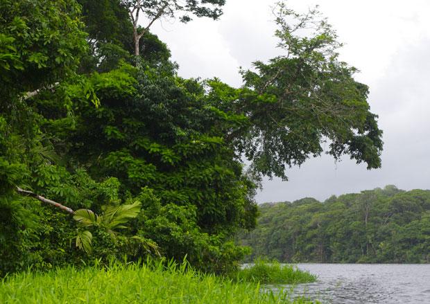 canali-tortuguero-costarica