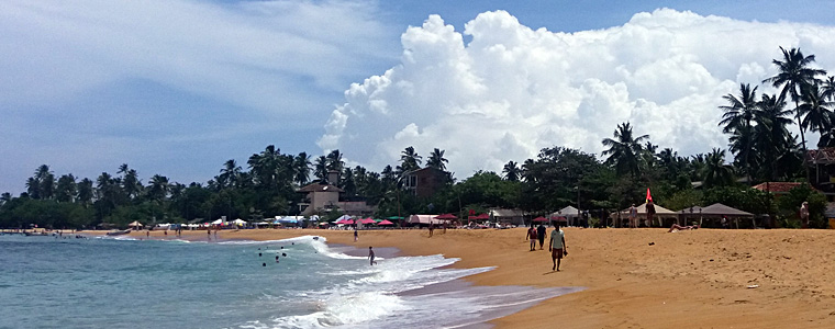 Mare-in-Sri-Lanka