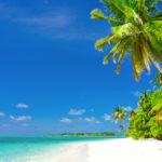 Vacanza Caraibi: Dove e Quando Andare ai Caraibi