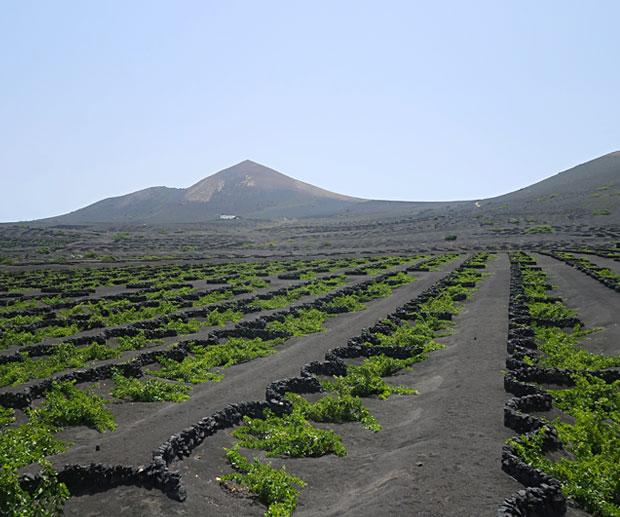 Lanzarote Cosa vedere