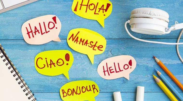 insegnare lingue su internet