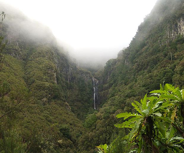 Madeira isola